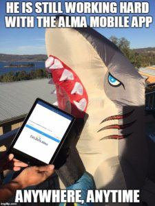 Alma Shark at Jindabyne 2